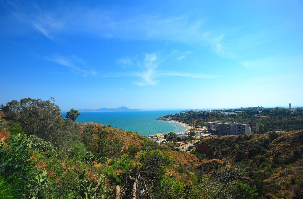 Detour To Sidi Bou Said