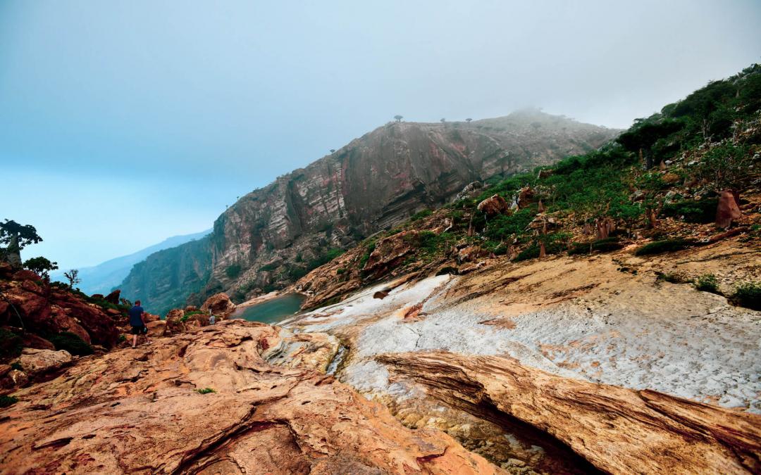 Socotra-pped On An Island Paradise: Day 2 – Arher Ahoy!