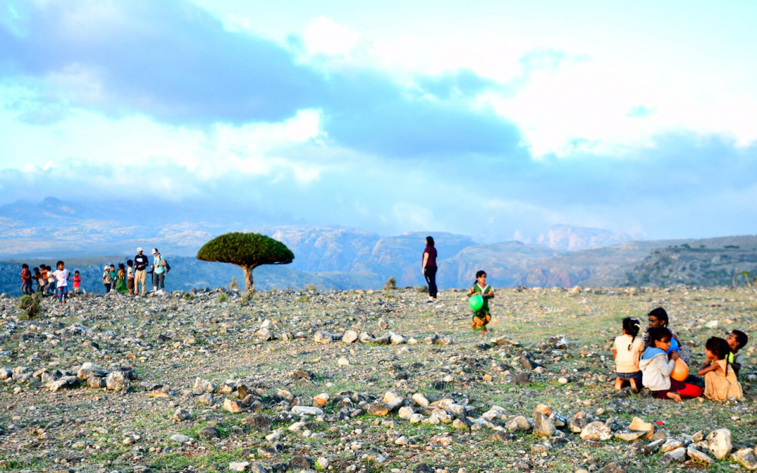 Socotra-pped On An Island Paradise: Day 4 – Where There May Be Dragons In Dixsam
