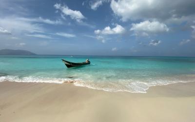 Socotra-pped On An Island Paradise: Day 7 – Rico Shuaab-ey